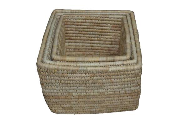Palm Baskets